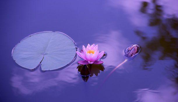 Czym medytacja transcendentalna i jak działa?
